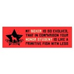 My BOXER is So Evolved - Bumper Sticker