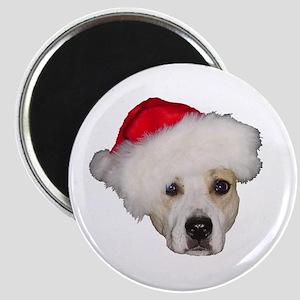 Christmas Stuff Magnet