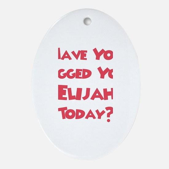 Have You Hugged Your Elijah? Oval Ornament