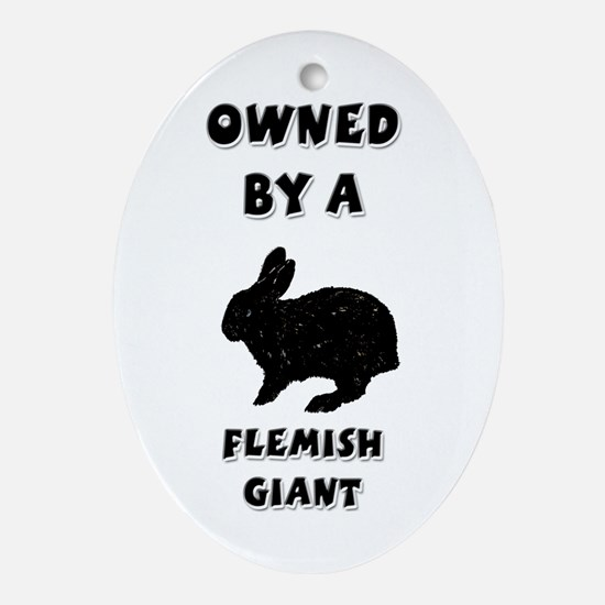 Owned by a Flemish Giant Keepsake (Oval)