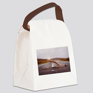 Swimming Down the Street Canvas Lunch Bag