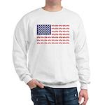 4 Wheeler in an American Flag Sweatshirt