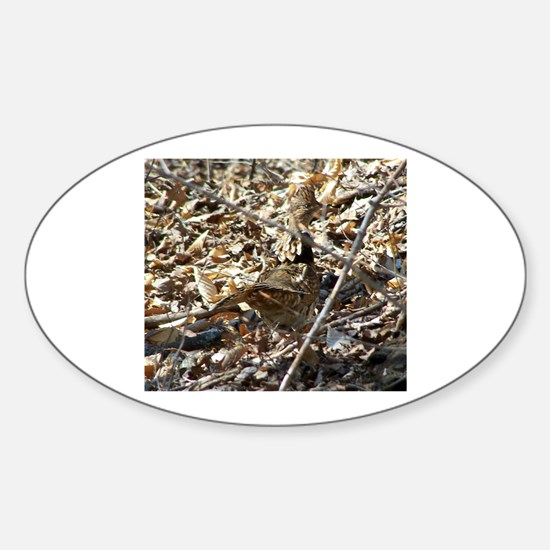 Camoflaged Ruffed Grouse Oval Decal