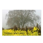 California Wine Country Postcards (Package of 8)