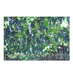 Ripe Hanging GrapesPostcards (Package of 8)