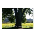 California Wine Country, Spring postards pack of 8