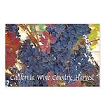 California Wine Country Harvest Postcards (8)