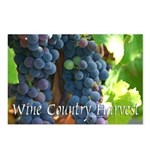 Wine Country Harvest Postcards (Pack of 8)