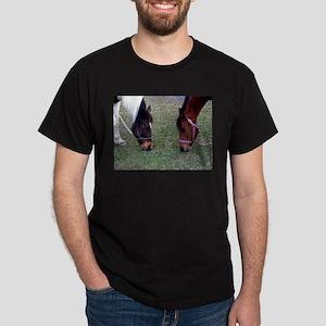 Grazing Horse Photograph T-Shirt