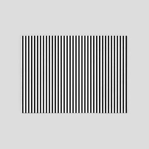 B&W Stripes 5'x7'Area Rug