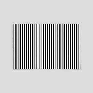 B&W Stripes 4' x 6' Rug