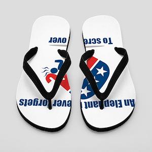 anti republican Flip Flops