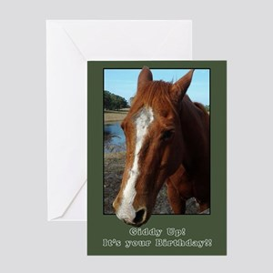 Happy Birthday Horse Card Greeting Cards