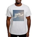 316. yes. .  Ash Grey T-Shirt