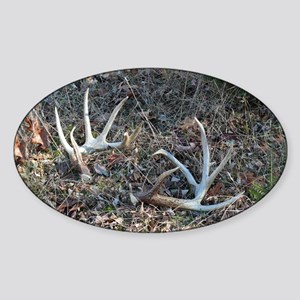Big shed antlers Oval Sticker