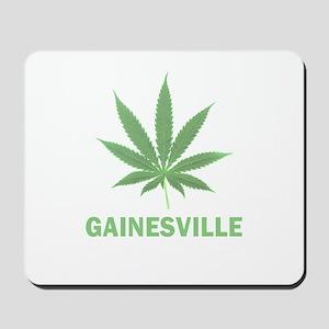 Gainesville, Florida Mousepad