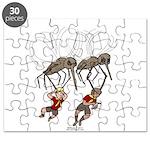 Mosquito Problem Puzzle