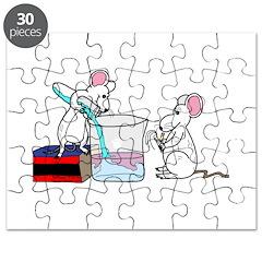 Lab Mice Puzzle
