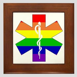EMS Pride Framed Tile