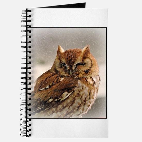 Winter Owl Journal