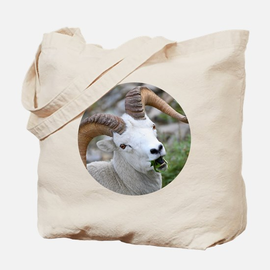 Funny Greys lunch Tote Bag