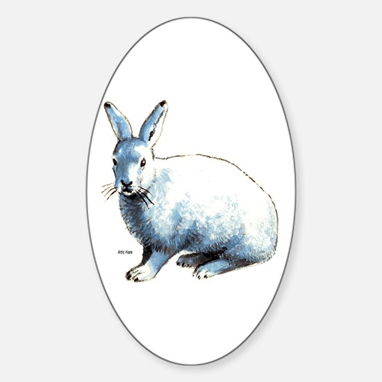 Artic Hare Oval Decal