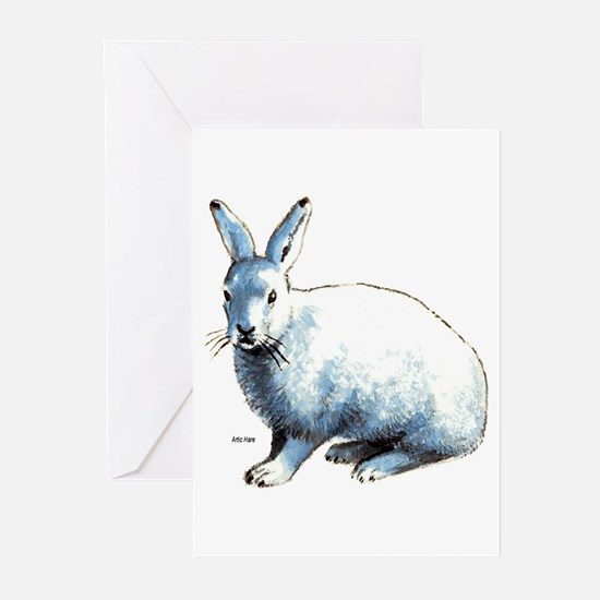 Artic Hare Greeting Cards (Pk of 10)