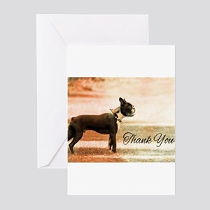 Thank You Boston Terrier Greeting Cards