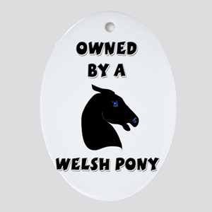 Owned by a Welsh Keepsake (Oval)