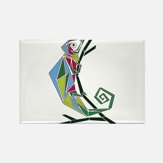 abstract chameleon Magnets