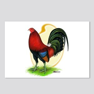 Red Gamecock3 Postcards (Package of 8)