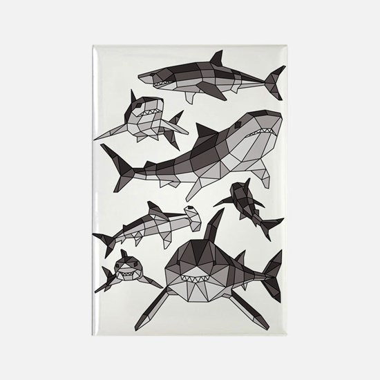 Cute Tiger shark Rectangle Magnet