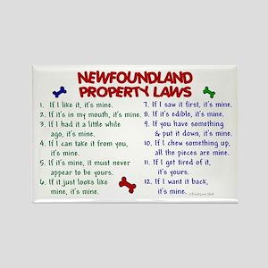 Newfoundland Property Laws 2 Rectangle Magnet