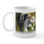 Jack Russell Terriers Rule! Mug