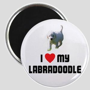 I Love My Labradoodle Magnet