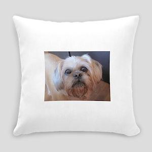 Daisy May Everyday Pillow