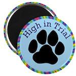HIT Award Magnet