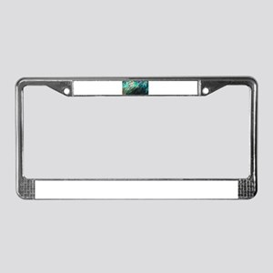 Iridescent Sea Shell License Plate Frame