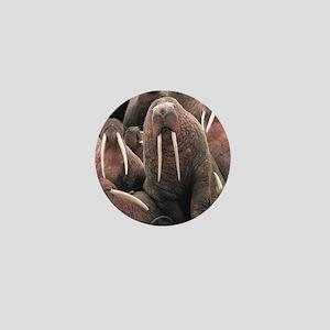 Walrus Mini Button