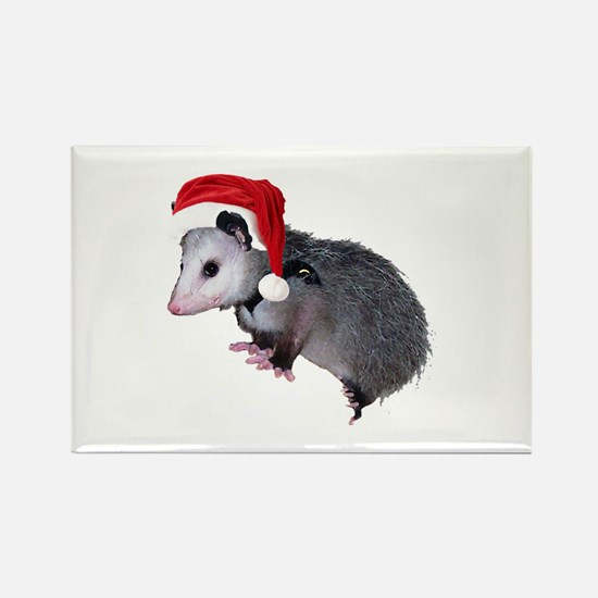 Santa Possum Rectangle Magnet