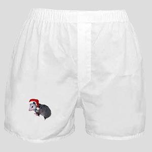 Santa Possum Boxer Shorts