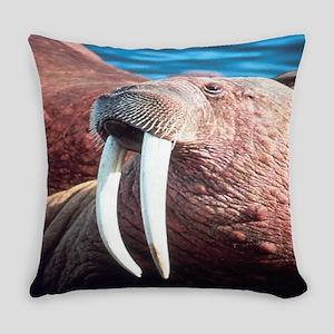 Walrus Everyday Pillow