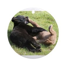 Cute Bear Cub Ornament (Round)