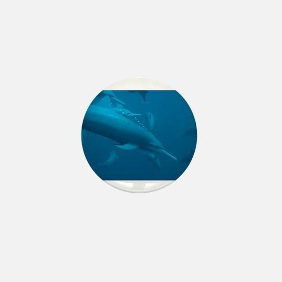 DOLPHIN_5 Mini Button