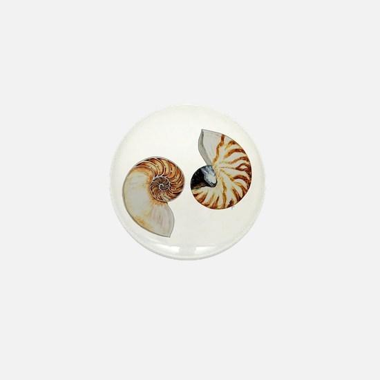 Chambered Nautilus Mini Button