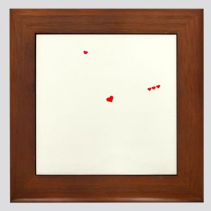 VINYL thing, you wouldn't understand Framed Tile