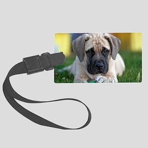 English Mastiff puppy Large Luggage Tag