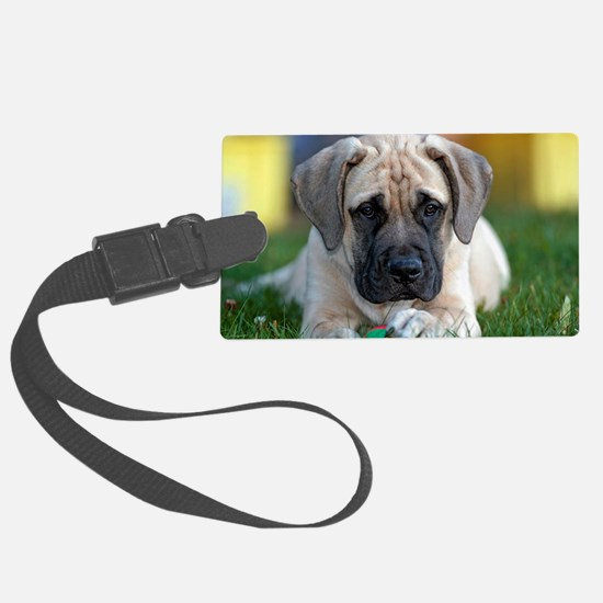 English Mastiff puppy Luggage Tag
