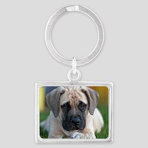 English Mastiff puppy Keychains