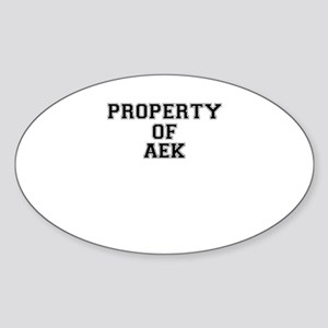Property of AEK Sticker